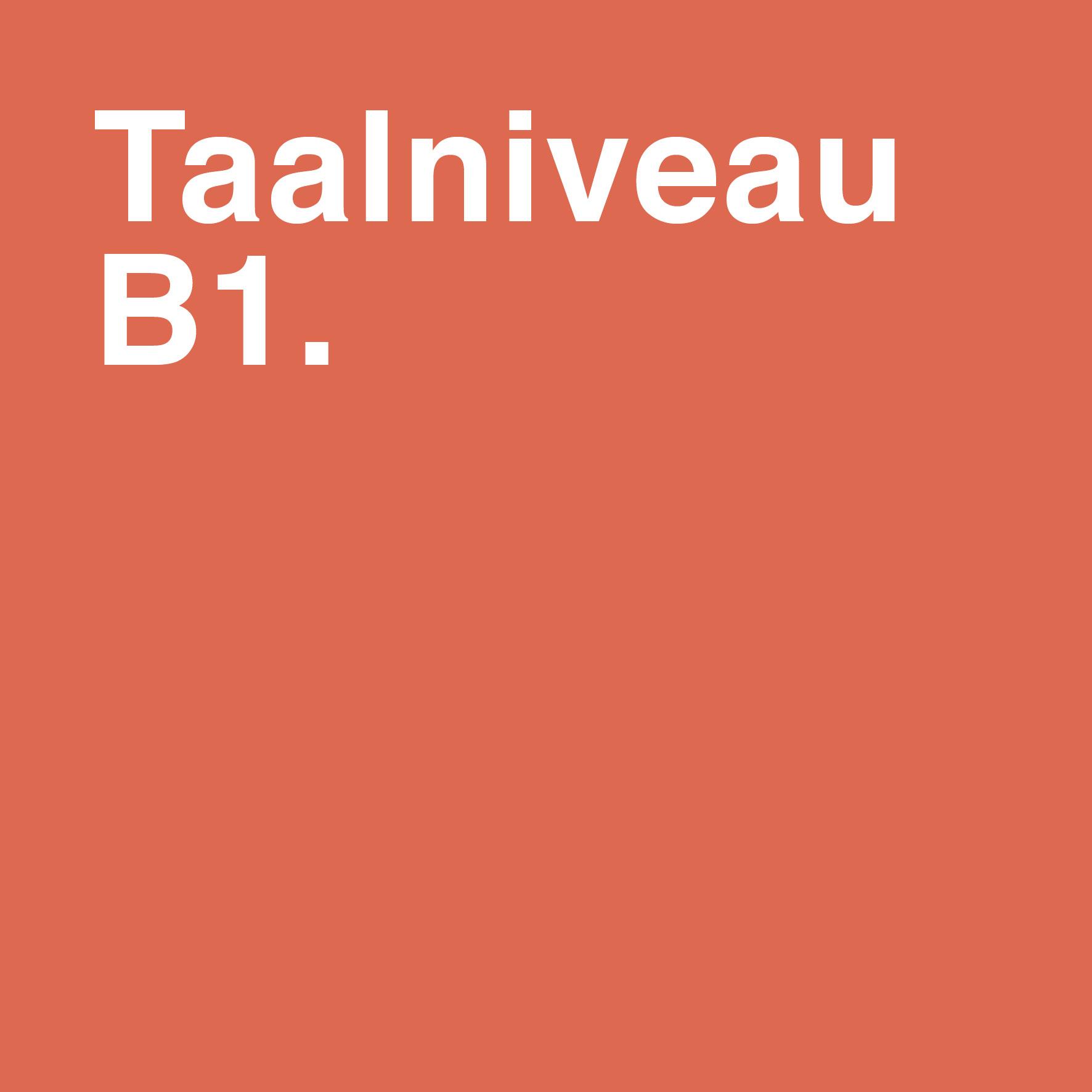 Wat is taalniveau B1 en hoe schrijf je op dit niveau?